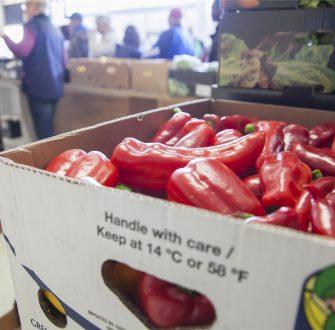 Emder Tafel: Spenden und 4000 Tüten voller Lebensmittel